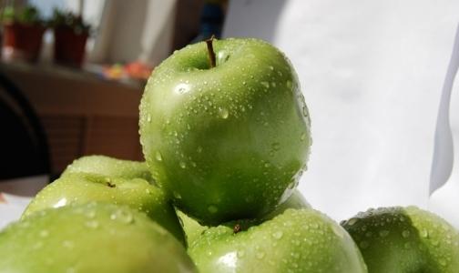 Фото №1 - Врачи рекомендуют переходить на вегетарианскую диету летом