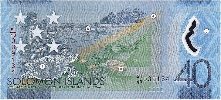 Фото №2 - Круговой обзор: зуб даю! Соломоновы Острова