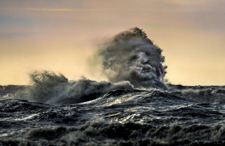 Фото №1 - Дух из глубин