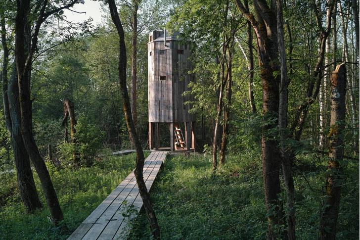 Фото №4 - Парк по проекту Александра Бродского в арт-усадьбе Веретьево