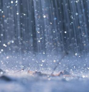 Фото №1 - Выходные будут дождливыми,