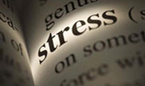 Фото №1 - Названа самая стрессовая профессия в России
