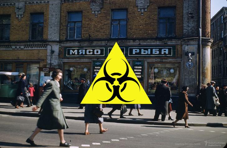 Фото №1 - Последняя вспышка оспы в СССР в 1959 году: как это было