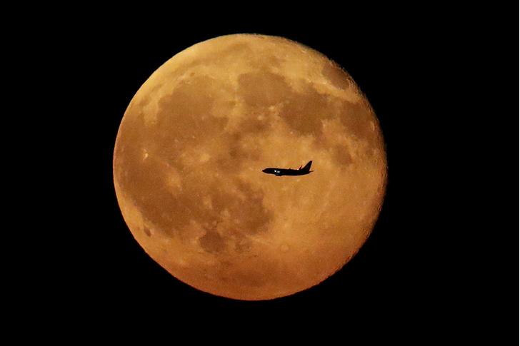 Фото №1 - Ночь полной Луны