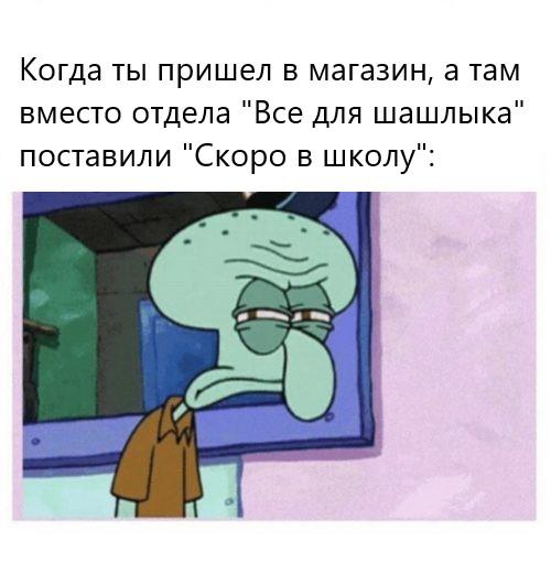 Фото №3 - Лучшие шутки и мемы про «Скоро в школу»