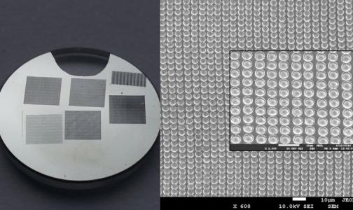 Фото №1 - Петербургские ученые разработали прибор для мгновенной диагностики инфекций
