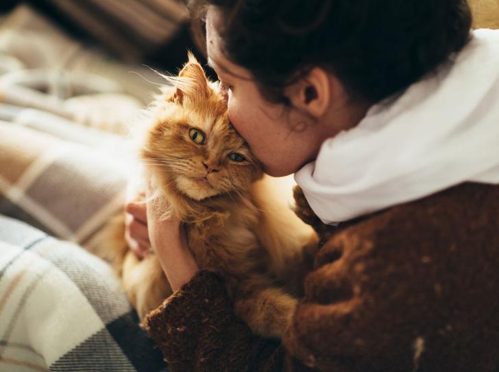 Фото №1 - Почему кошки любят женщин больше, чем мужчин