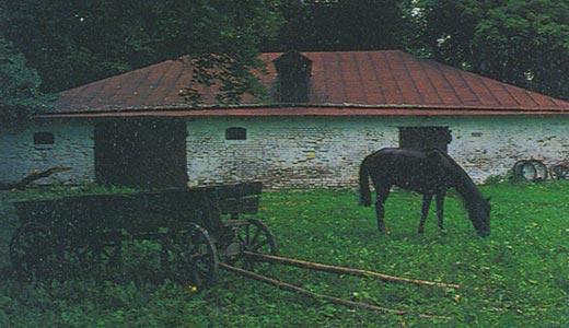 Фото №6 - «Когда мы будем в Спасском…»