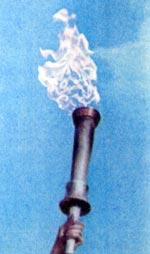 Фото №2 - Эстафета олимпийского огня