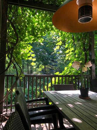 Фото №3 - ELLE DECORATION в саду у дизайнера Ирины Глик