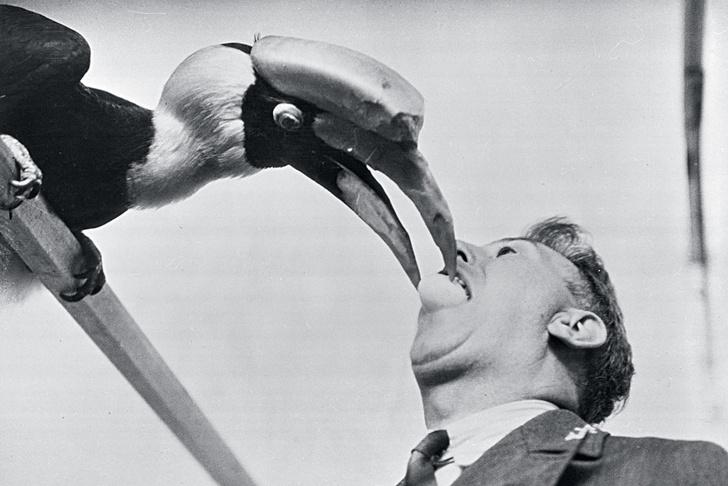 Фото №1 - Как очистить свою речь от слов-паразитов