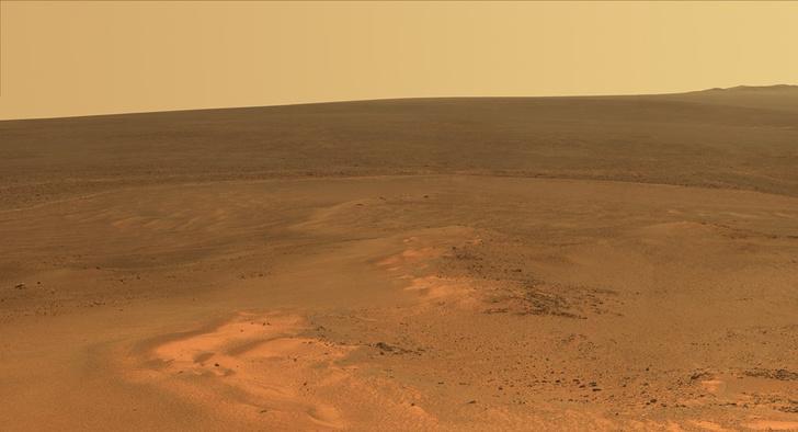 Фото №1 - Какие животные выживут на Марсе