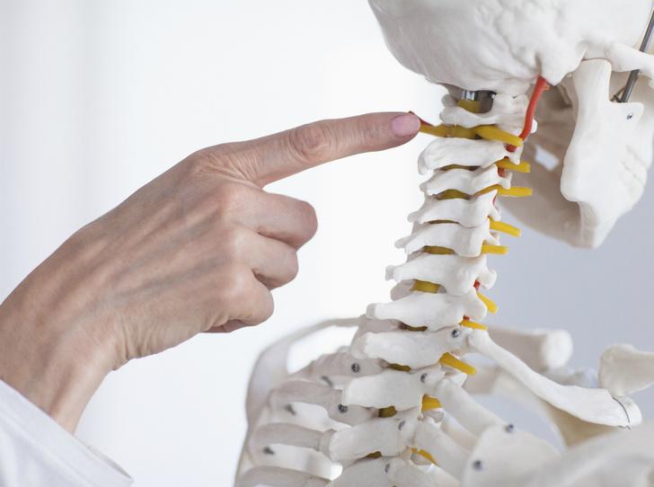 Фото №4 - Краниобаланс: как положение черепа влияет на здоровье
