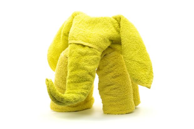 Фото №1 - Как сложить слона из полотенца