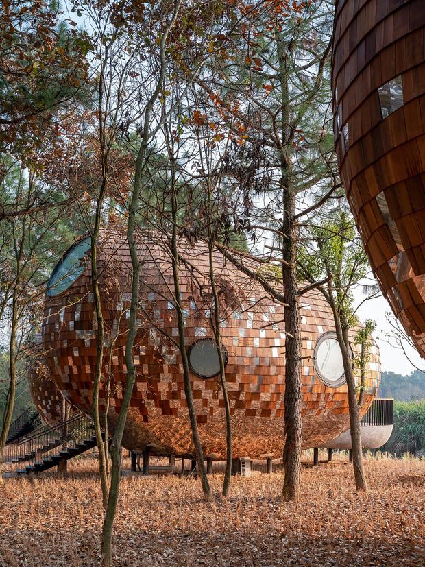 Фото №3 - The Seeds: гостевые дома в Китае