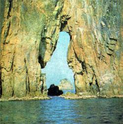 Фото №3 - Острова залива Петра Великого