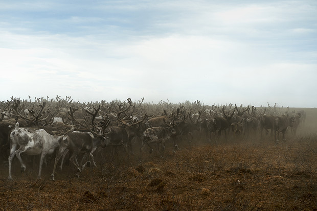 Фото №11 - Енисейский трип