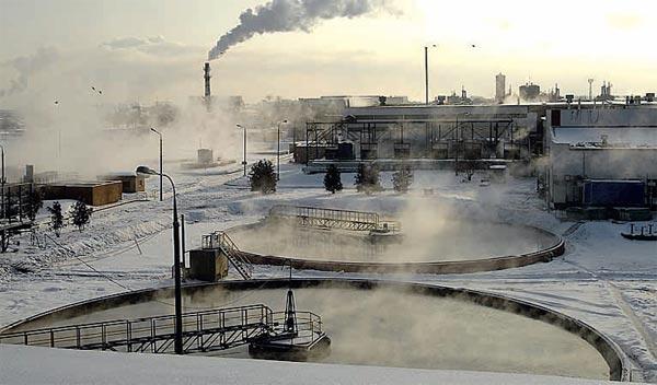 Фото №3 - Экоостров в России пока «нерентабелен»