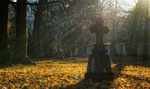 Фото №1 - В Петербурге хоронить умерших с COVID-19 разрешили на двух кладбищах