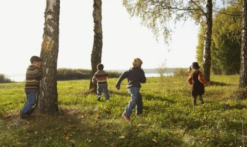 Фото №1 - В Ленобласти третий ребенок заболел клещевым энцефалитом