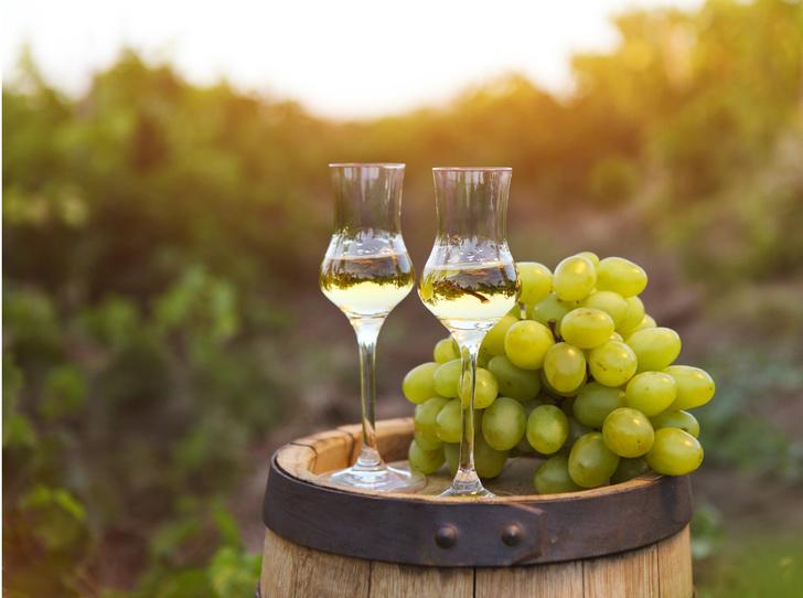 Фото №1 - Вкус Италии: что такое граппа и как ее правильно пить