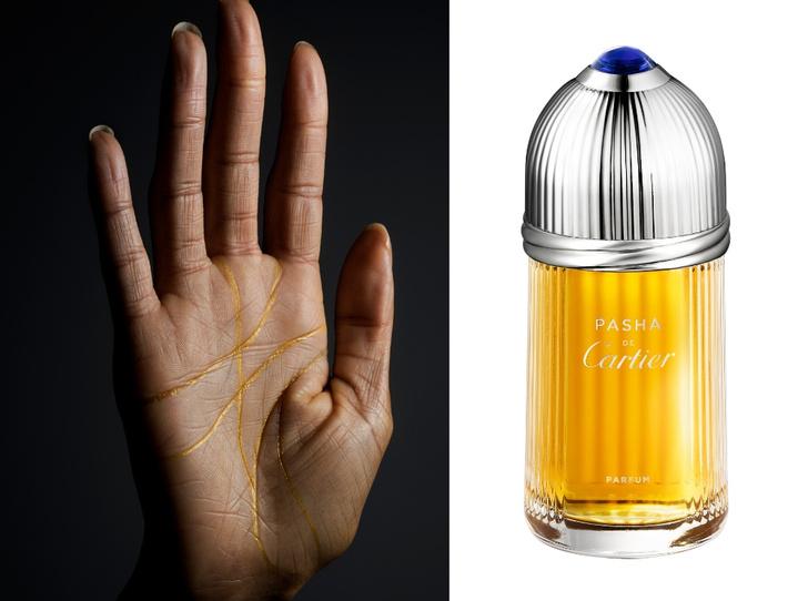 Фото №1 - Аромат дня: Pasha de Cartier Parfum