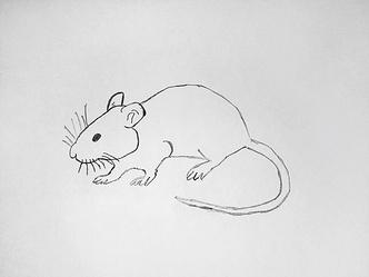 Фото №10 - Нани Брегвадзе, Ивар Калныньш и другие звезды нарисовали крыс на удачу