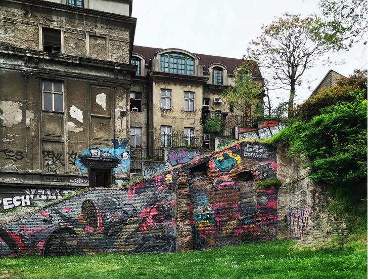 Фото №12 - Город, в котором говорят стены: прогулка по Белграду