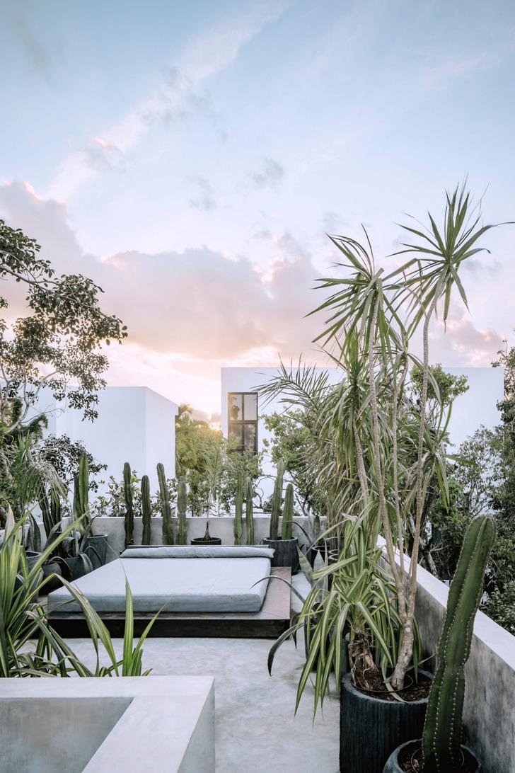 Фото №17 - Бруталистская бетонная вилла в джунглях Тулума