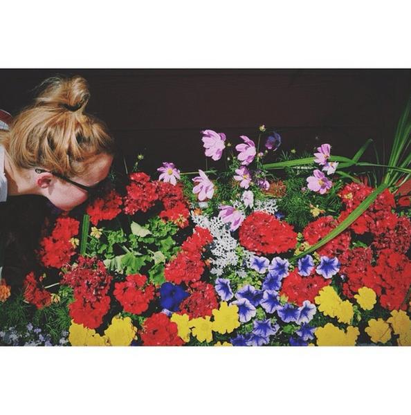 Фото №27 - Звездный Instagram: Знаменитости и цветы