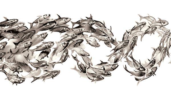 Фото №1 - Нил Шубин. Рука рыбы