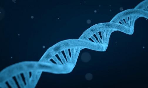 """Фото №1 - """"Обходит антитела"""". В геноме коронавируса нашли две новые опасные мутации"""