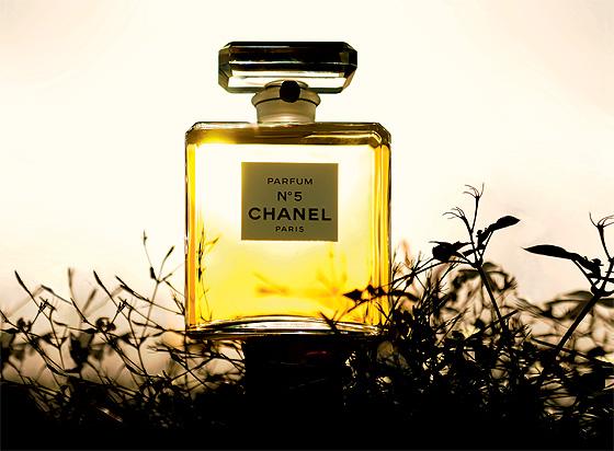 Фото №1 - Химия аромата
