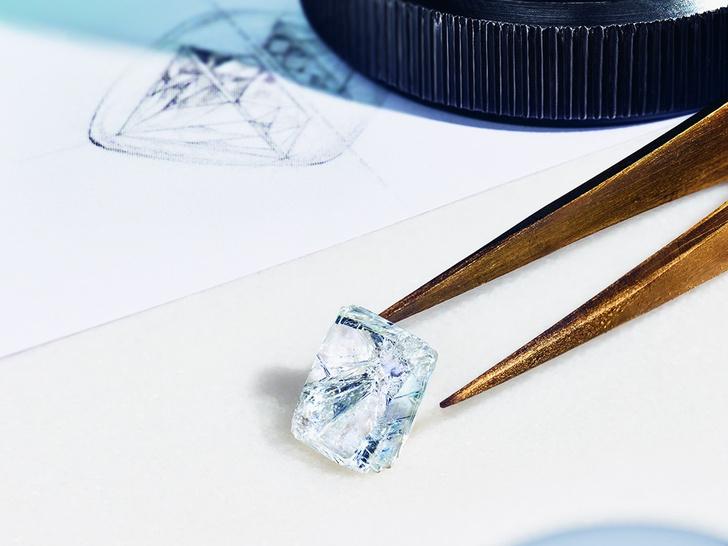 Фото №1 - «Бриллианты Тиффани»: что нужно знать о новой выставке бренда в ГУМе