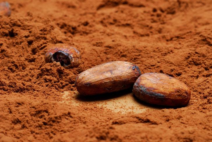 Фото №1 - Ученые рассказали о полезном свойстве какао