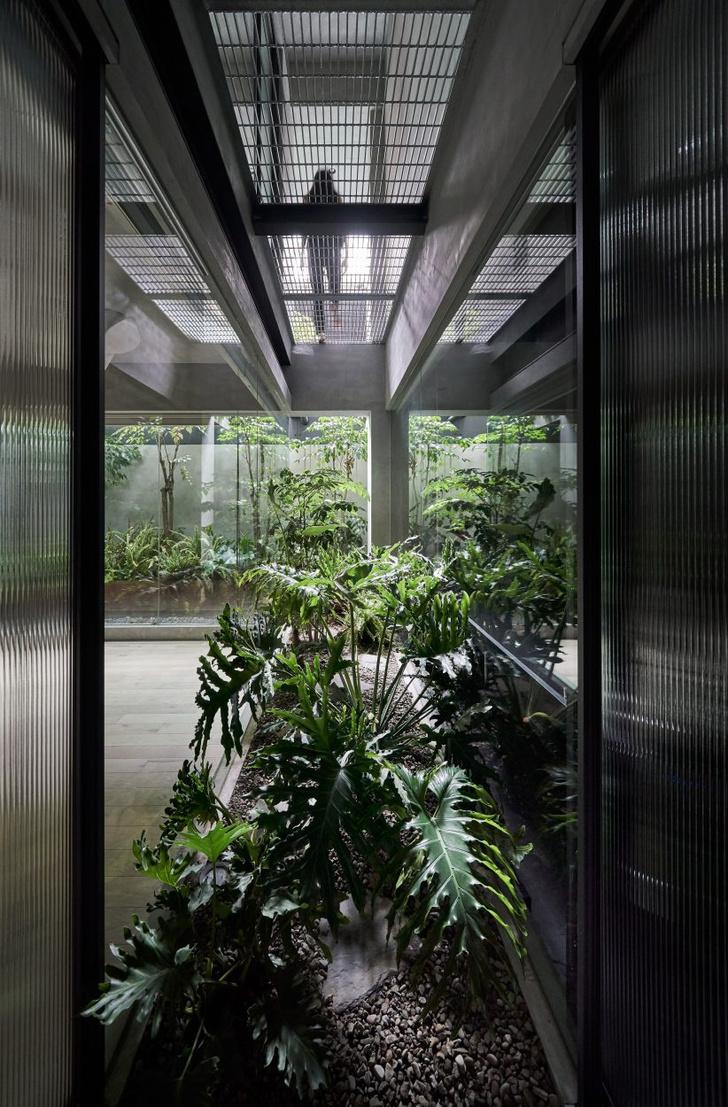 Фото №8 - Квартира на цокольном этаже в Тайбэе