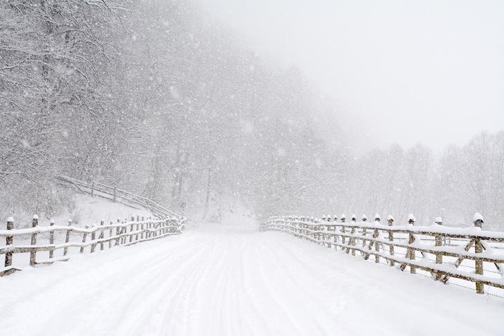 Фото №4 - Снежные мотивы: о чем нужно вспомнить автомобилисту в преддверии зимы