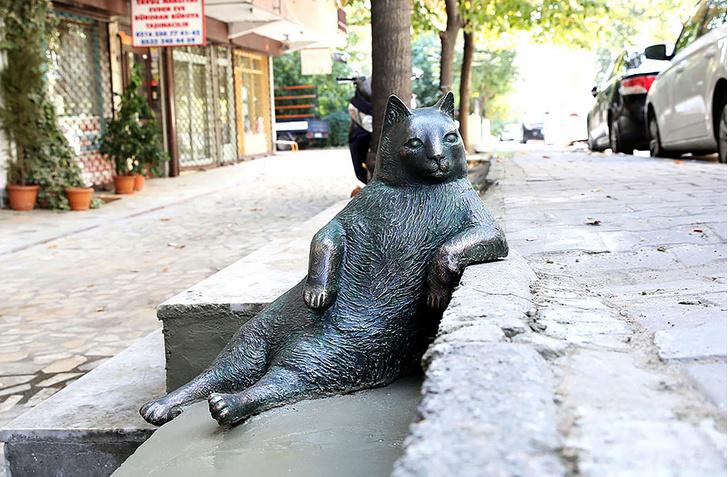Фото №1 - В Стамбуле установили памятник коту-мему
