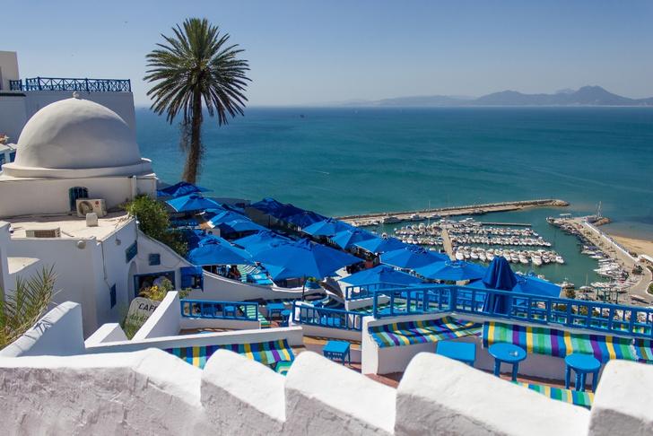 Фото №2 - Жемчужина Туниса: зачем ехать в бело-голубой город Сиди-бу-Саид