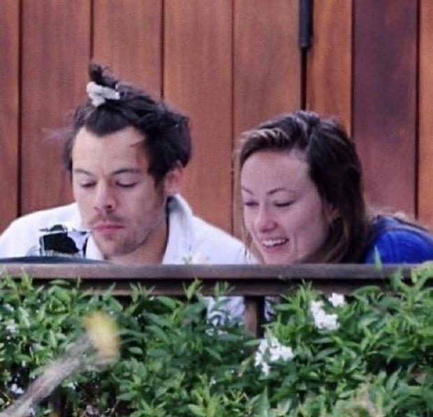 Фото №3 - СМИ: Гарри Стайлс и Оливия Уайлд счастливы вместе