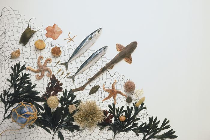 Фото №1 - Косметика на основе морских компонентов: чем она лучше?