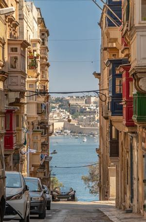 Фото №4 - Такая разная Мальта: шедевры архитектуры, дикая природа и отличные курорты