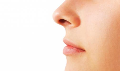 Фото №1 - Нос человека назвали эволюционной случайностью