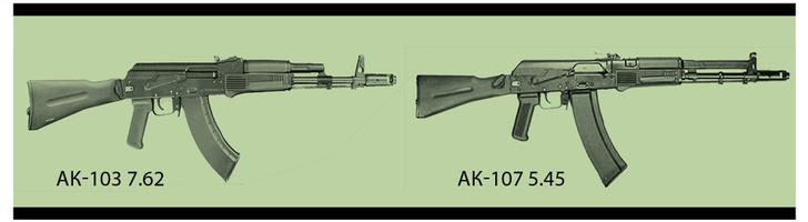 Фото №10 - Царь-пушка: мифы и правда об автомате Калашникова