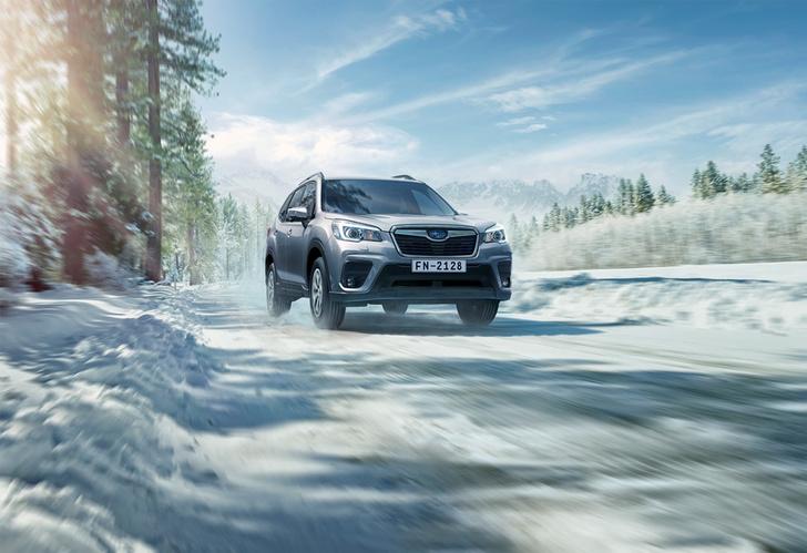 Фото №1 - Новый кроссовер Subaru Forester — идеология превосходства