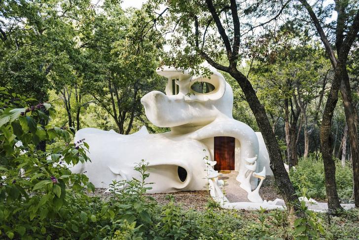 Фото №2 - Сказочный дом с органическими формами в сердце леса