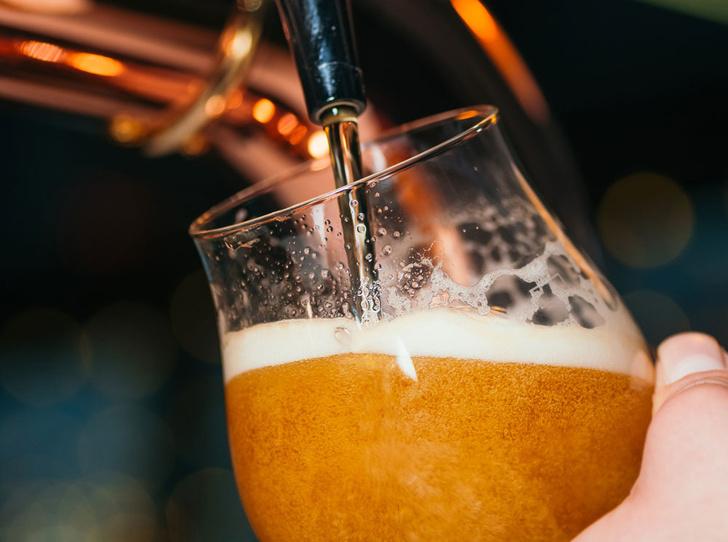 Фото №3 - К пятнице: самый глянцевый гид по пиву