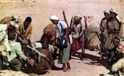 Фото №3 - В горах Дофара гремят выстрелы