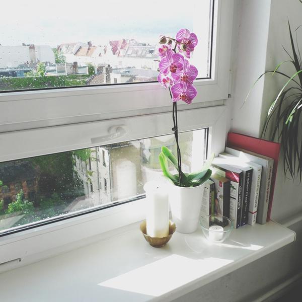 Фото №3 - Съемная квартира: создаем уют без ремонта