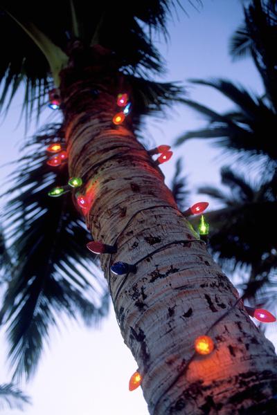 Фото №2 - 5 способов оригинально украсить елку